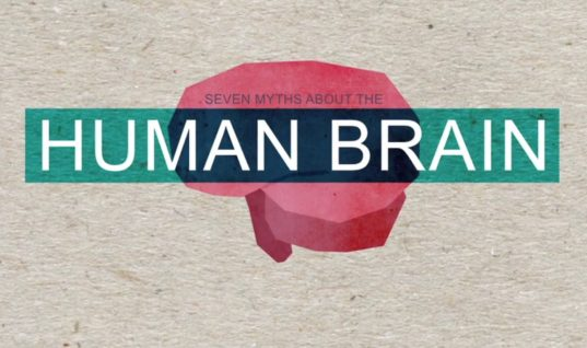 Seven Myths About the Human Brain