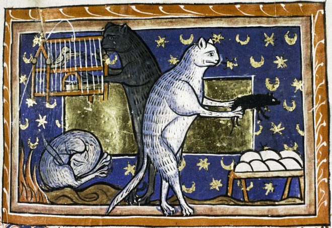 Check out Ugly Medieval Paintings of Cats, it looks like the medieval painters never laid eyes on a cat. 79