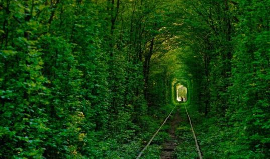 "Discovering the most romantic corner in Ukraine, ""Tunnel of Love"""