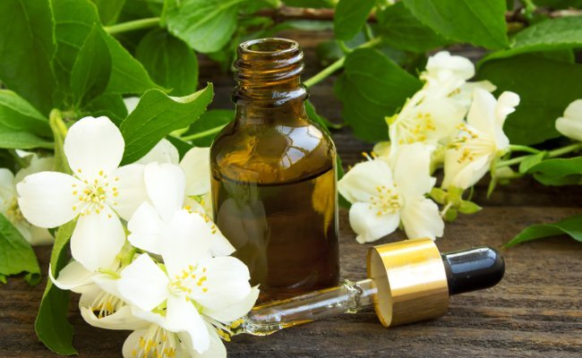 No Oncologist Will Tell You The Truth About Essential Oils 72