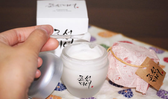 Beauty of Joseon Dynasty Cream Review – THE YESSTYLIST – Asian Fashion Blog