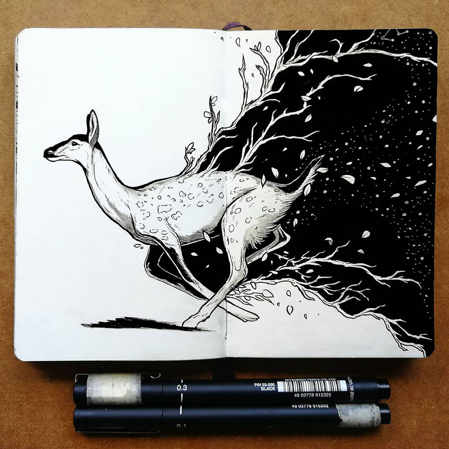 Magical Animal Illustrations Mixed With The Night Sky 37