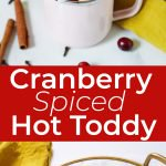 Delicious Hot Toddy With Cranberries! 8