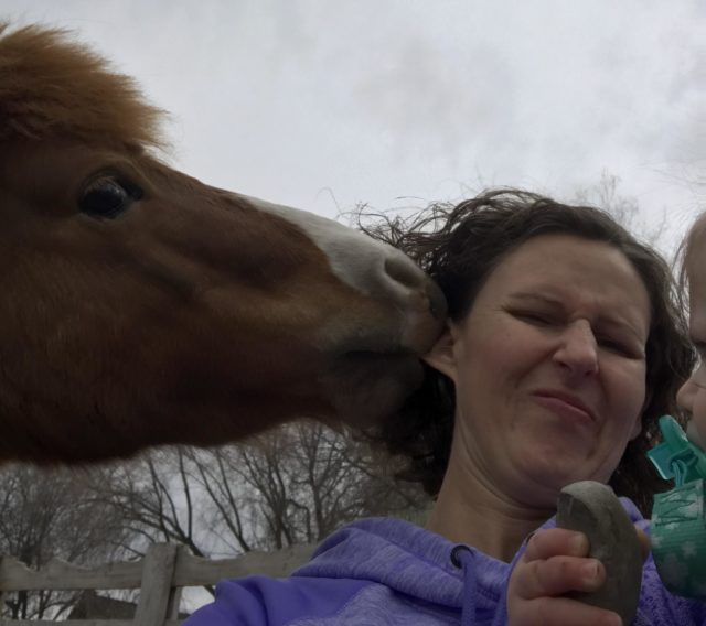 A bad photo with a horse