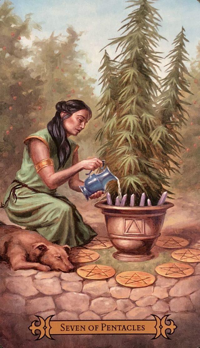 Tarot card seven penctals