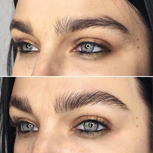 fluffy eyebrows
