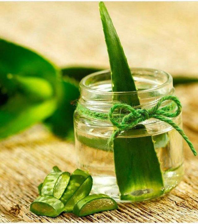 Aloe vera, tonic
