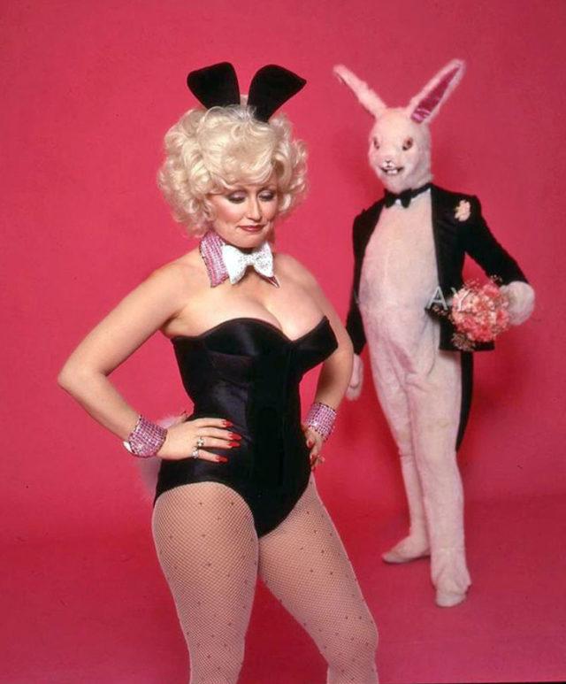 Playboy hare