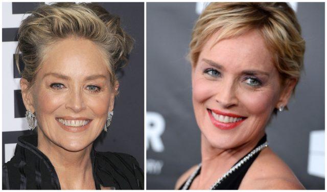 Sharon Stone vs plastic