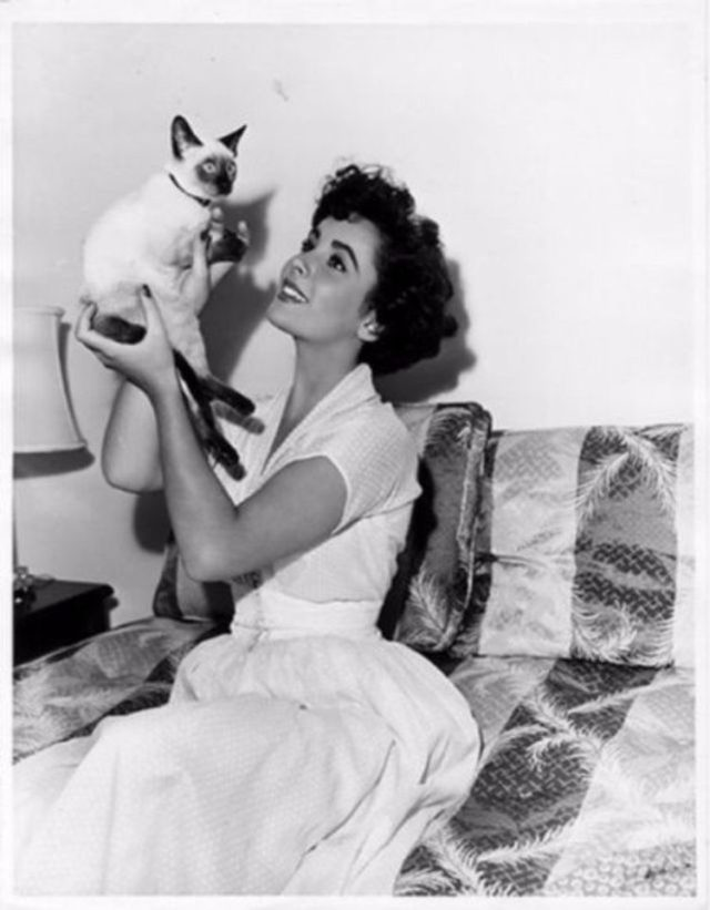 Elizabeth Taylor in her youth