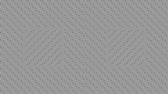 gray picture with optical illusion