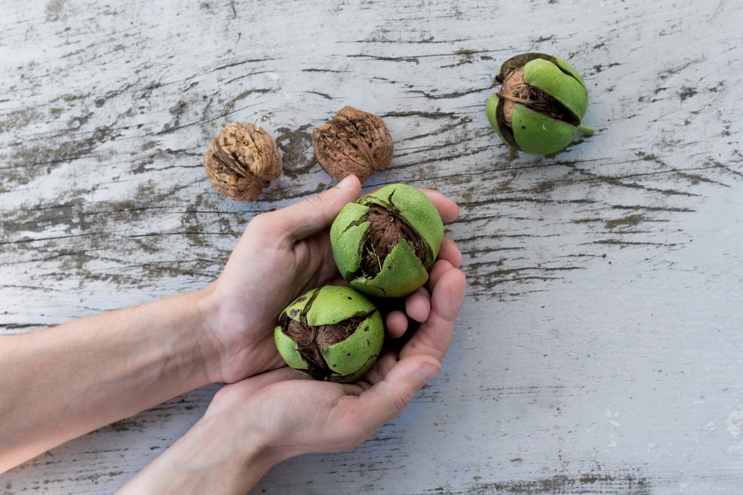 4 Undeniable reasons to enjoy walnuts as often as possible 36