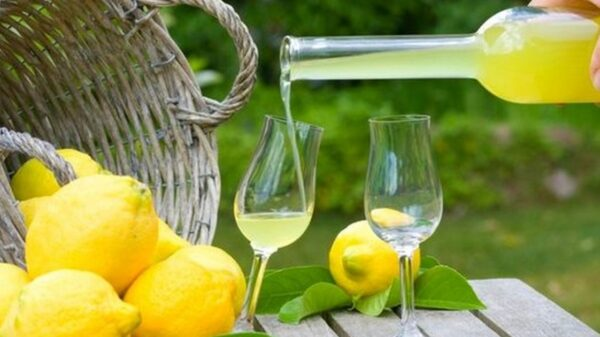 Delicious Homemade Limoncello liqueur recipe 6