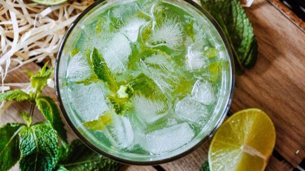 Mint Julep Recipe: Thrilling cocktail for Bar Art connoisseur 65