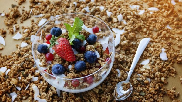 Granola! Top 5 Popular Breakfast Recipes 6