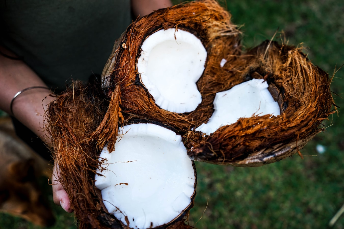 Breaking! Coconut oil is good for COVID-19 say scientists 36