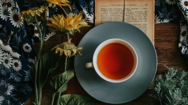 Helpful Advice on How to brew tea correctly 8